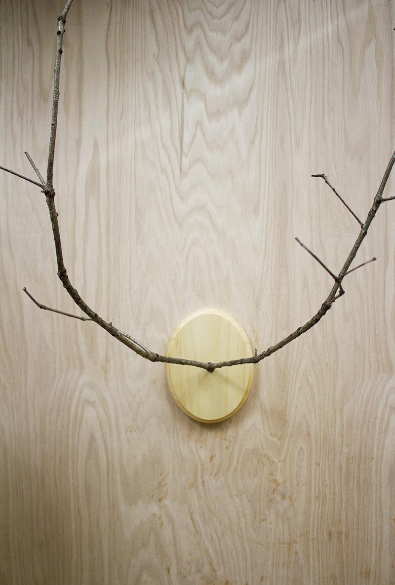 DIY Branch Antlers