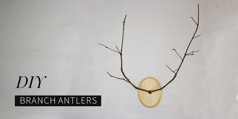 DIY Branch Antlers: A Modern Twist