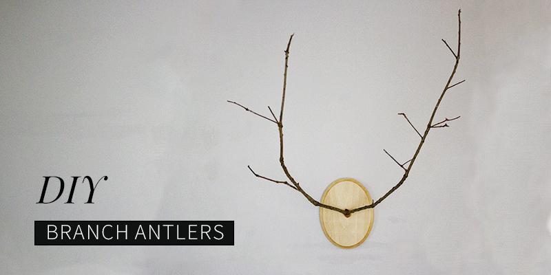 DIY Branch Antlers: A Modern Twist
