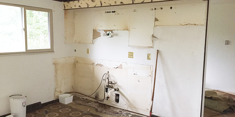 Kitchen Reno: Part II (Demo Day)