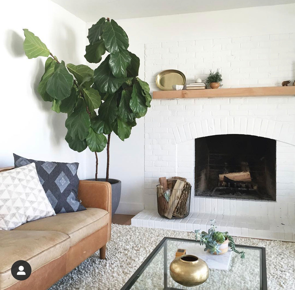 15 Living Room Makeover